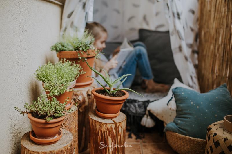 Jakie Rośliny Wybrać Na Balkon Szafeczkacom